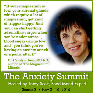Dr. Carolyn DeanQuote_Anxiety2