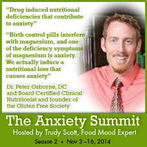 The Anxiety Summit - Drug induced nutritional deficiencies