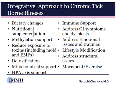 integrative-approach-chronic-tick-borne-illnesses