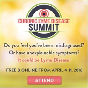 chronic-lyme-disease-summit-y