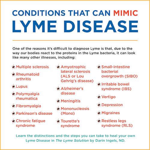 the lyme solution by dr darin ingels everywomanover29many in my community have both lyme disease and anxiety and many nutritional solutions, such as gaba (a calming amino acid supplement), can ease their