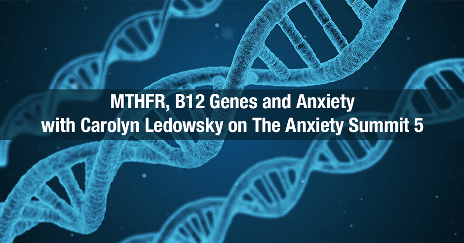 MTHFR Anxiety Summit 5