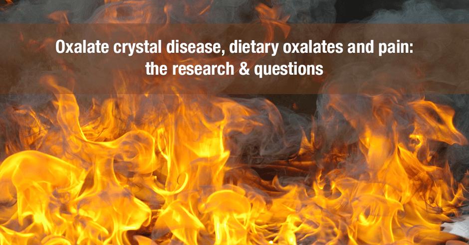 oxalate crystal disease