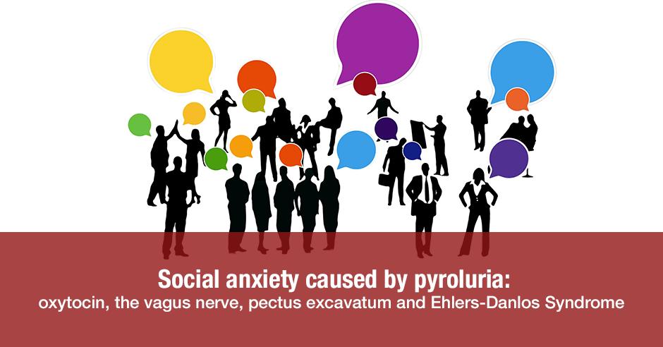 social anxiety pyroluria